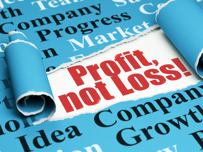 profit not loss and a quick loan